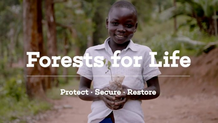 Forests for Life Partnership