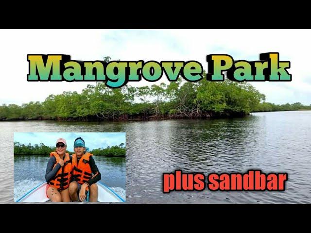 MANGROVE PARK ECO-TOUR / LANGUYON BEACH RESORT/ BAGANGA DAVAO ORIENTAL/ TRAVEL VLOG # 50