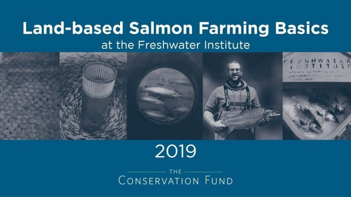 Land-based Salmon Farming Basics
