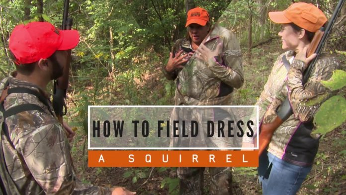 How To Field Dress a Squirrel