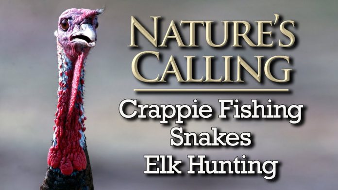Nature's Calling - Crappie, Snakes, Elk Hunting (May 2020)
