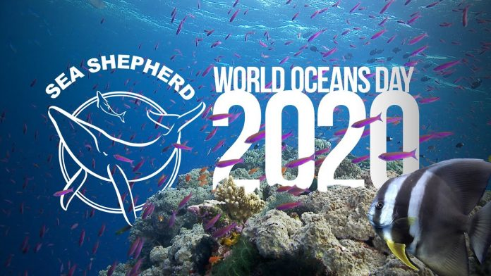 Every Day is World Oceans Day
