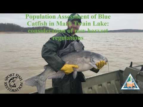 Mark Twain Lake Blue Catfish Study (2020)