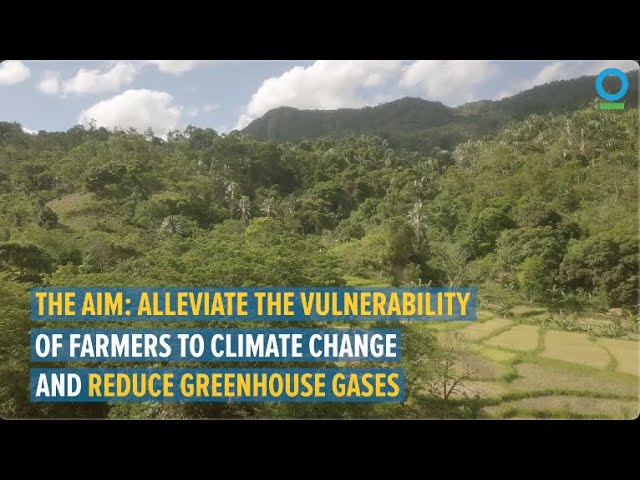 Farmers in Eastern Madagascar Stand up to Climate Change