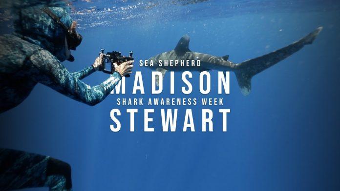 Madison Stewart - Shark Awareness Week