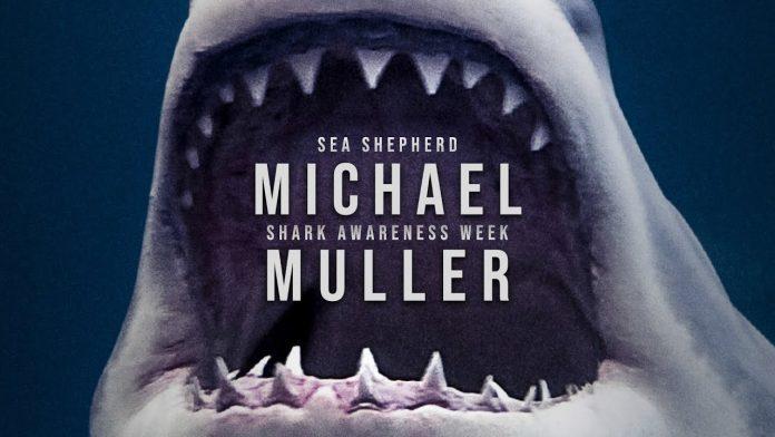 Michael Muller - Shark Awareness Week