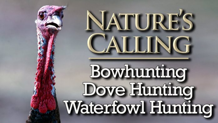 Nature's Calling - Bowhunting, Dove Hunting and Waterfowl Hunting (Sept 2020)