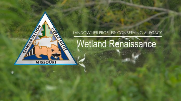 Landowner Profile: Wetlands