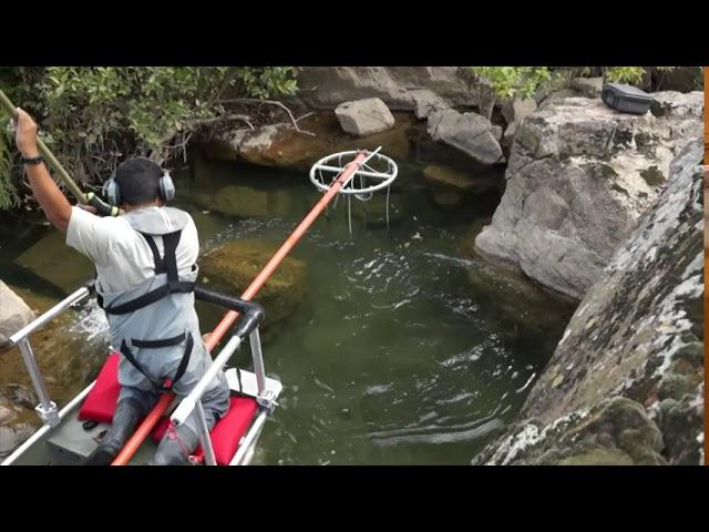 Fish Shocking in Missouri