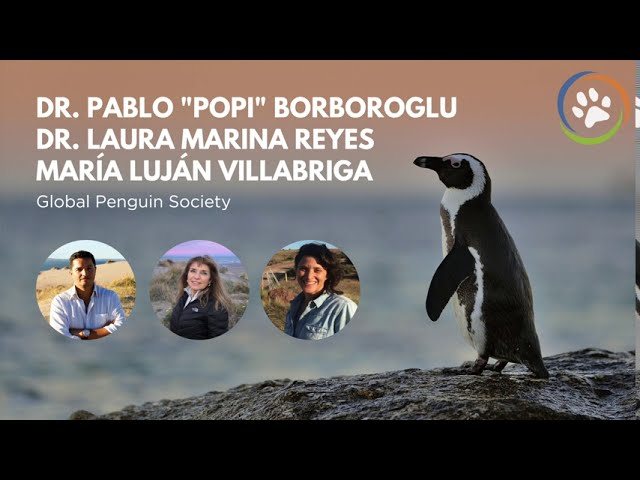 WCN Virtual Fall Expo 2020: Global Penguin Society