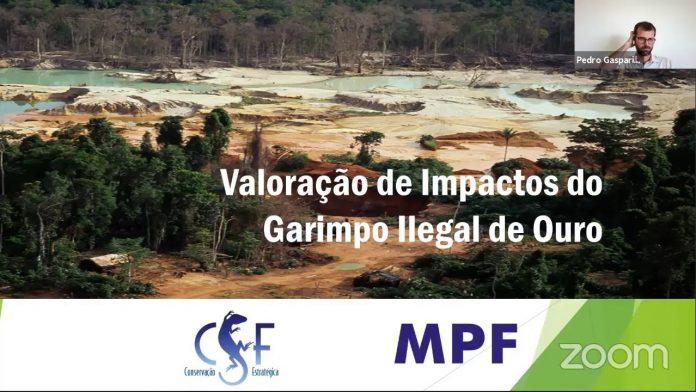 """""""Valoração de Impactos do Garimpo Ilegal de Ouro"""""""