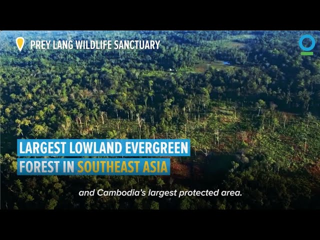 Nature-Based Solutions for Prey Lang Wildlife Sanctuary