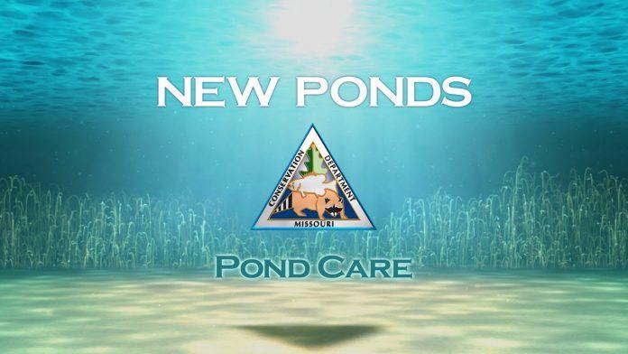 Pond Care 104: New Ponds
