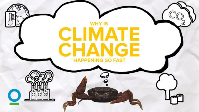 WHY IS CLIMATE CHANGE HAPPENING SO FAST? - Climate Change #2 | Conservation International Singapore
