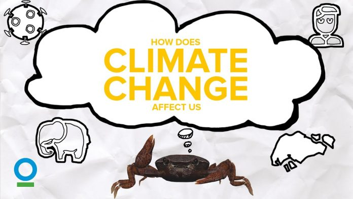HOW DOES CLIMATE CHANGE AFFECT US? - Climate Change #3 | Conservation International Singapore
