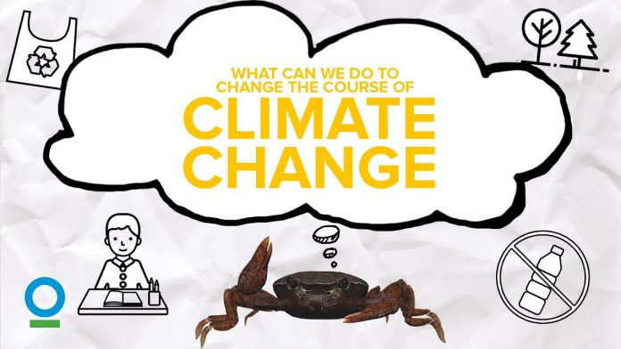 WHAT CAN WE DO TO CHANGE THE COURSE OF CLIMATE CHANGE? - Climate Change #5 | CI Singapore