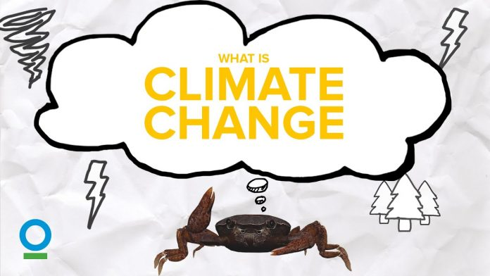 WHAT IS CLIMATE CHANGE? - Climate Change #1 | Conservation International Singapore