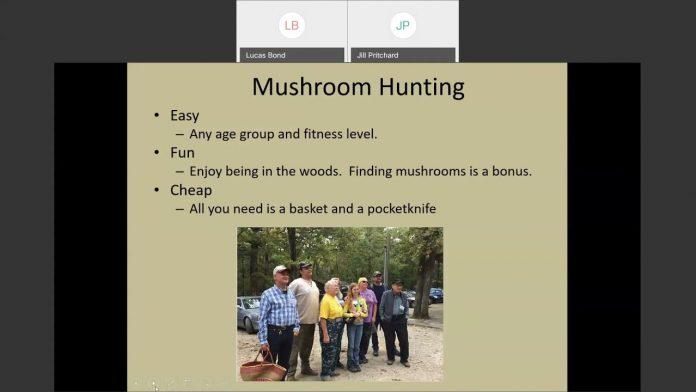 Wild Webcast - Mushroom Hunting (2021.04.21)