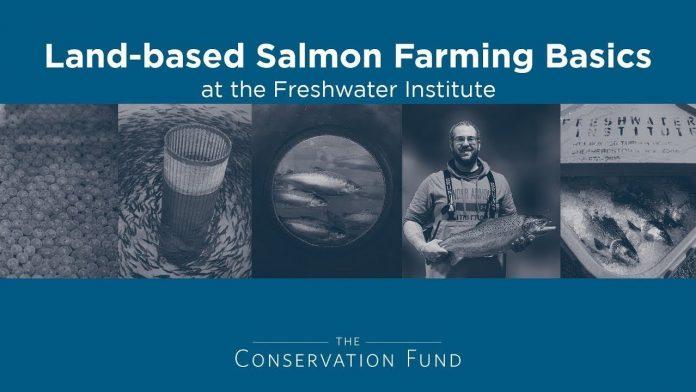 Land-based Salmon Farming Basics