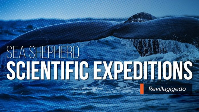 Sea Shepherd Scientific Expeditions - Revillagigedo