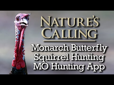 Nature's Calling  (Sept 2021)