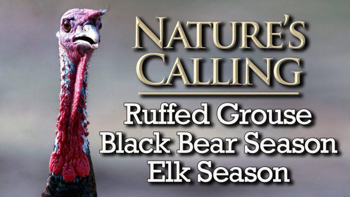 Nature's Calling (Oct 2021)